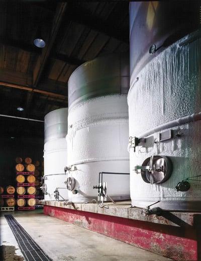 Wijnvergisters in een kelder